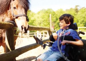 Vivo_60_Boy_with_horse_19362